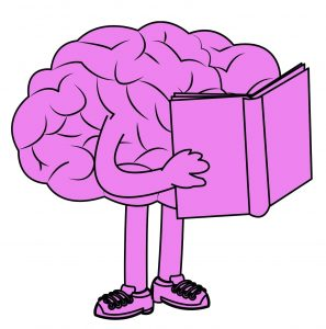 CLEVER brain read